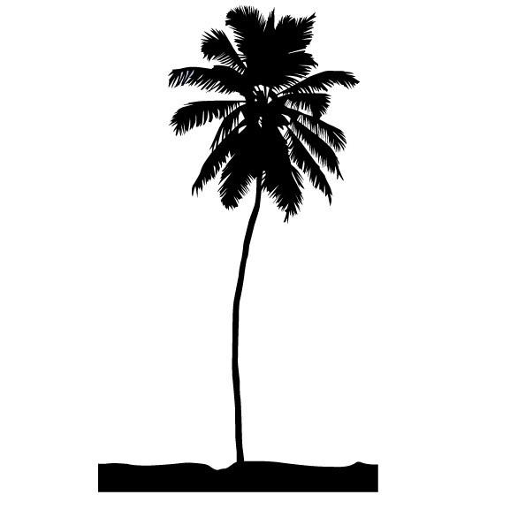 "4 ft Tall Palm Tree Wall Decal - 48"" tall x 27"" wide"