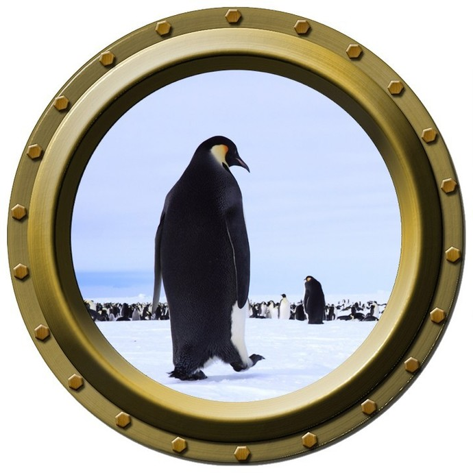 Marching Penguin Porthole Wall Decal