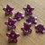 Lucite Flower Beads, Medium Daisy, Pearl Purple, 12