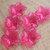 Flower Beads, Lucite Acrylic, Translucent Dark Pink Amaryllis, 8