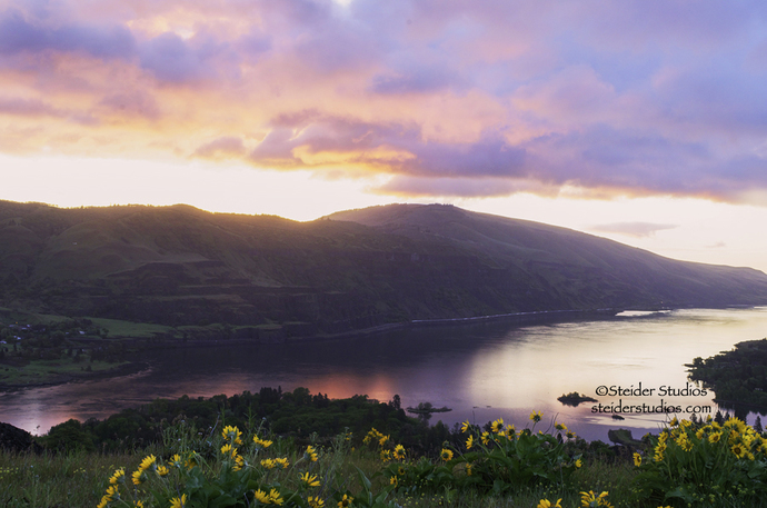 Colorful Sunrise From Rowena Crest in the Columbia River Gorge, Landscape