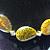 amazonite sparkle necklace - agate, amazonite