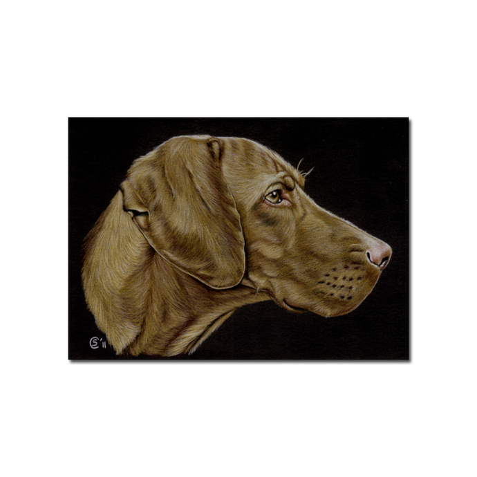 "4x6"" COMMISSION PET Custom PORTRAIT Sandrine Curtiss Original Art animal colored"