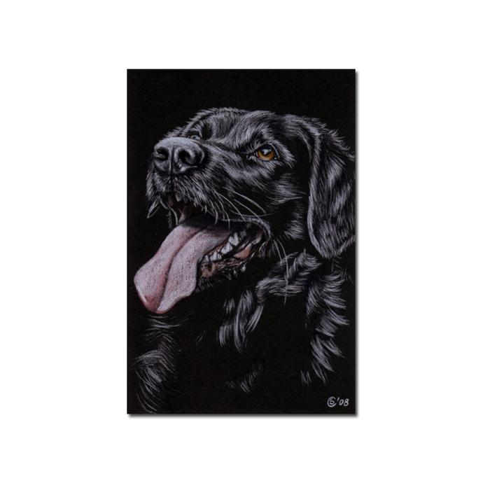 "4x6"" COMMISSION PET Custom PORTRAIT Sandrine Curtiss Original Art animal colored"