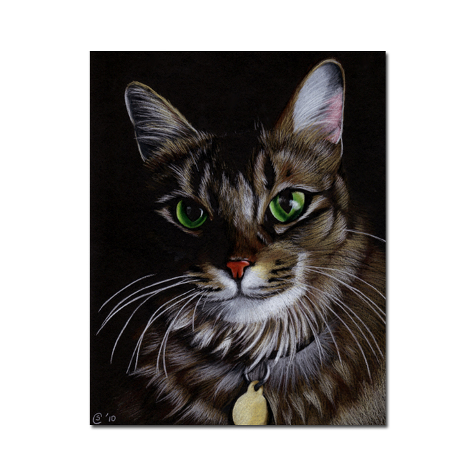 "8x10"" COMMISSION PET Custom PORTRAIT Sandrine Curtiss Original Art animal"