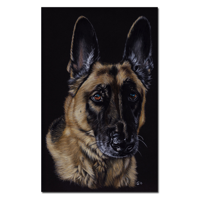 "20x24"" COMMISSION PET Custom PORTRAIT Sandrine Curtiss Original Art animal"