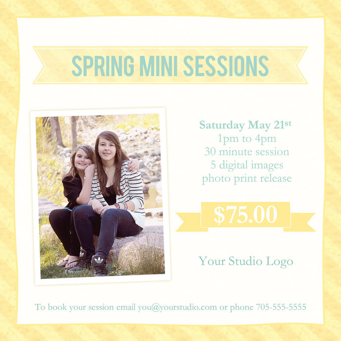 Spring Mini Session, Mini Session Template, Spring, Flyer Template, Photshop