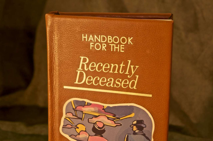 Beetlejuice Handbook For The Recently Deceased IPad / Kindle / EReader / Tablet