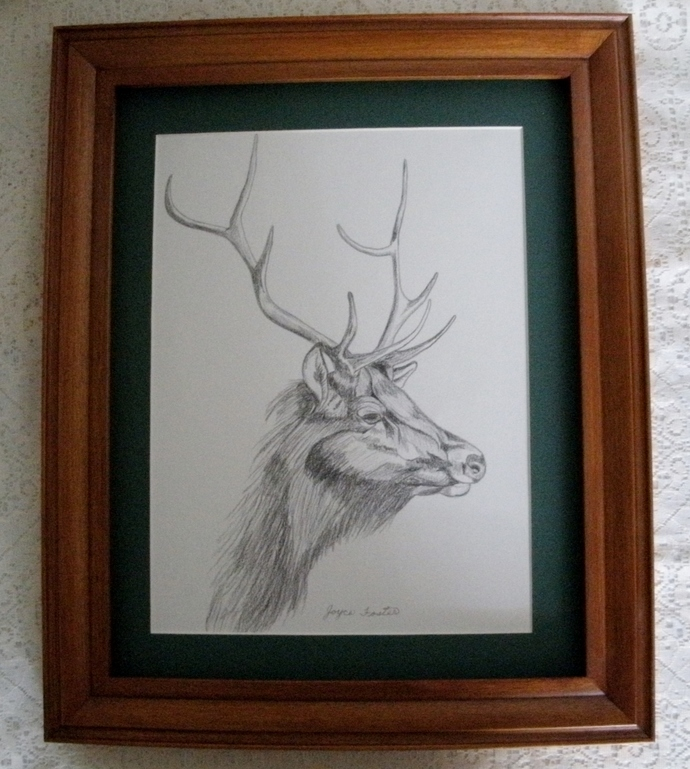 Elk Drawing, original, fine art, realism, animal, nature, woodland, rustic, home