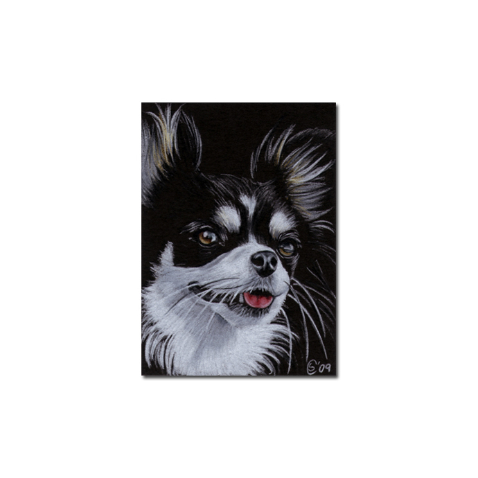 "ACEO COMMISSION PET Custom PORTRAIT Sandrine Curtiss Original Art 2.5""x3.5"""