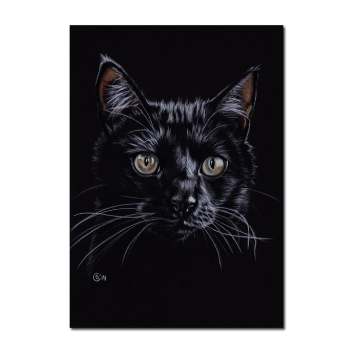 CHAT NOIR 196 black cat portrait kitten kitty Halloween colored pencils painting