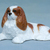 Hevener Collectible Cavalier King Charles Dog Figurine