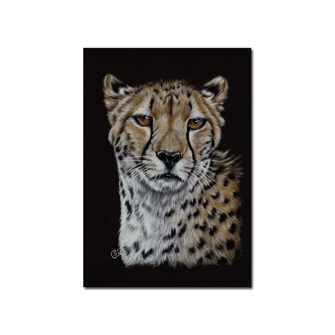CHEETAH 3 big cat portrait guepard kitten kitty Halloween colored pencils