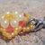 Orange and Ivory Snowflake Charm - Hand Beadwoven - Phone, Stylus, Zipper Pull