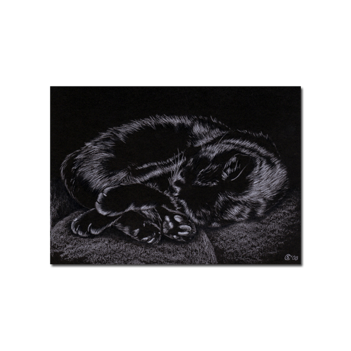 Black CAT Sunshine 13 kitten Halloween chat noir drawing painting Sandrine