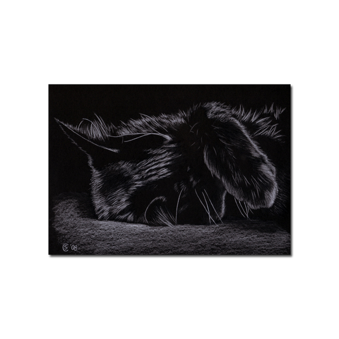 Black CAT 122 kitten Halloween chat noir drawing painting Sandrine Curtiss Art