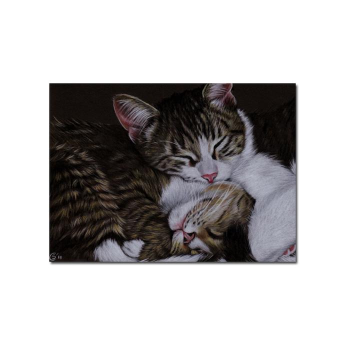 Tabby 96 CAT grey ginger orange tiger kitty kitten drawing painting Sandrine