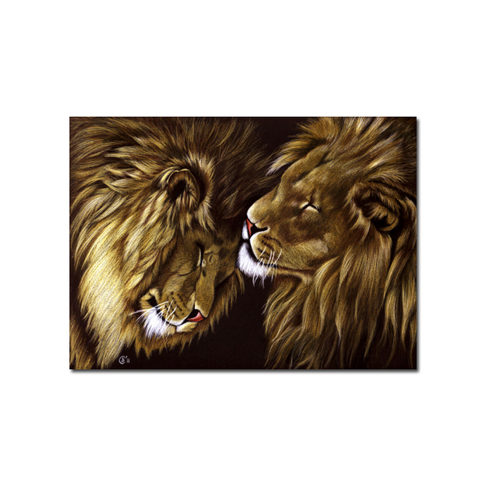 LIONS big cat animal feline kitty kitten drawing painting Sandrine Curtiss Art