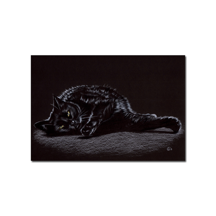 BLACK CAT 181 kitten Halloween chat noir drawing painting Sandrine Curtiss Art