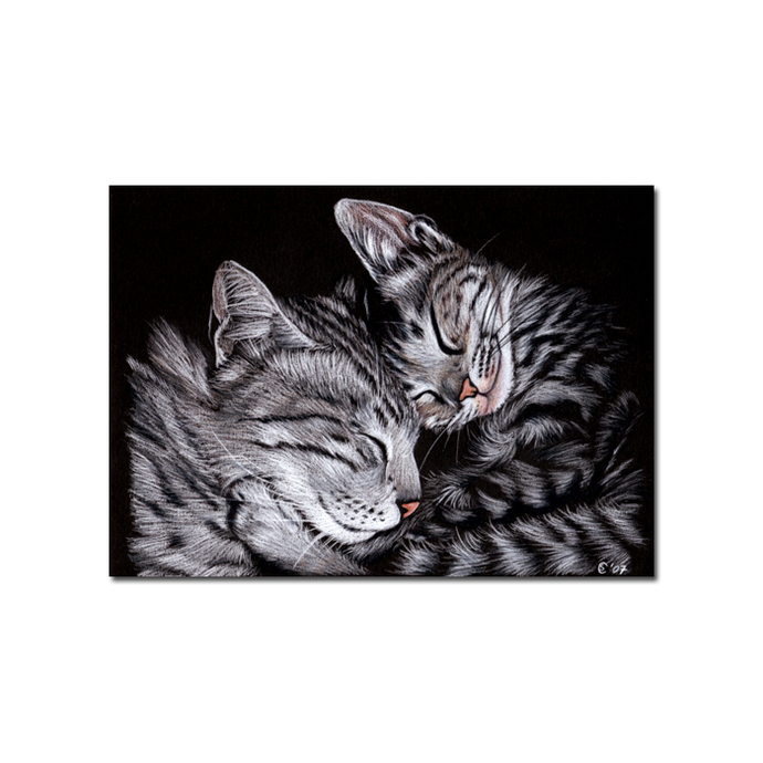 KITTENS 2 tabby CAT grey ginger orange tiger kitty drawing painting Sandrine