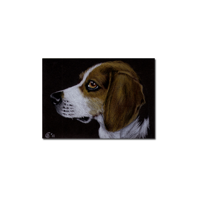 BEAGLE 2 dog puppy pet pencil painting Sandrine Curtiss Art Limited Edition