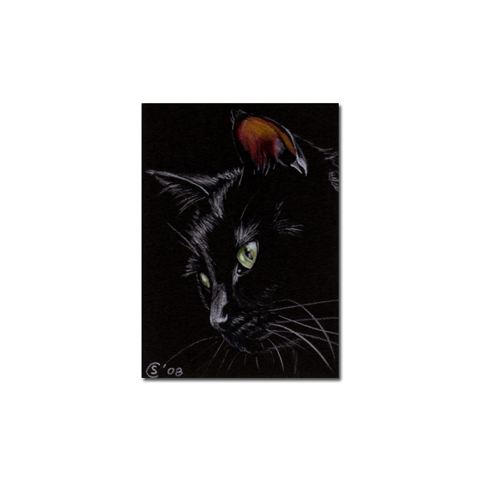 Black CAT 113 kitten Halloween chat noir drawing painting Sandrine Curtiss Art