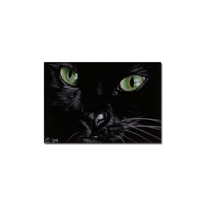Black CAT 153 kitten Halloween chat noir drawing painting Sandrine Curtiss Art