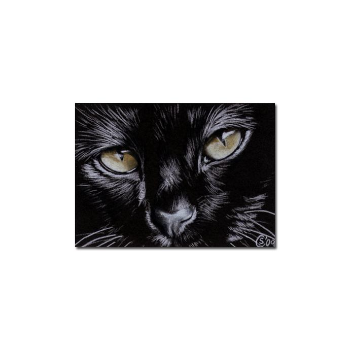 Black CAT 137 kitten Halloween chat noir drawing painting Sandrine Curtiss Art