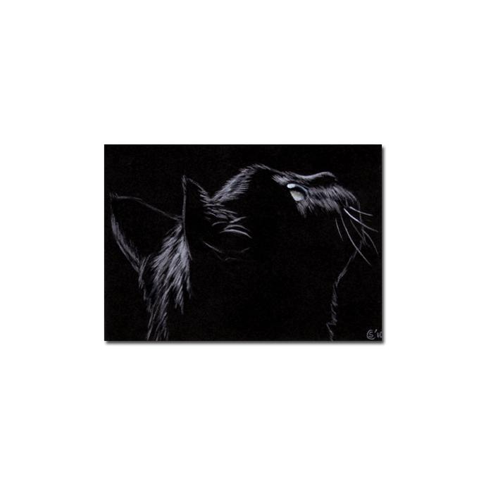 Black CAT 168 kitten Halloween chat noir drawing painting Sandrine Curtiss Art