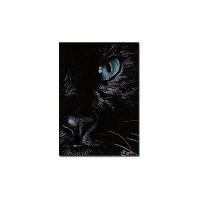 BLACK CAT 151 kitten Halloween chat noir drawing painting Sandrine Curtiss Art