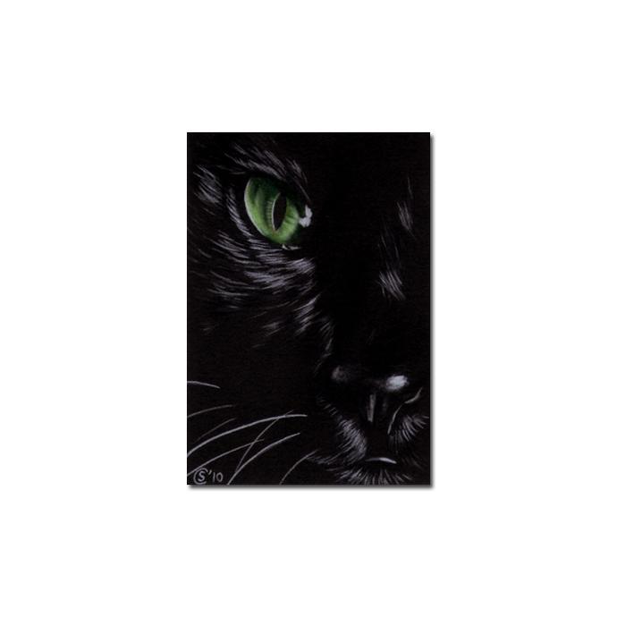 Black CAT 167 kitten Halloween chat noir drawing painting Sandrine Curtiss Art