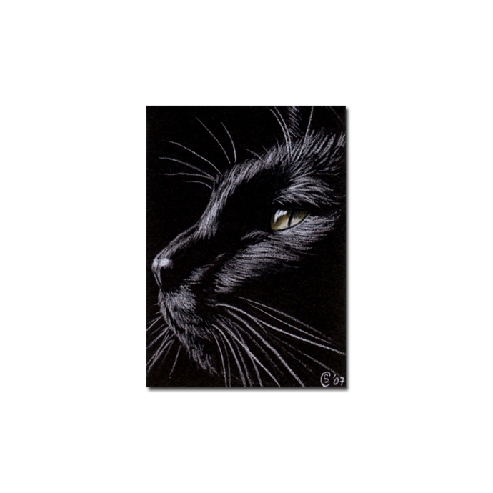 Black CAT 78 kitten Halloween chat noir drawing painting Sandrine Curtiss Art