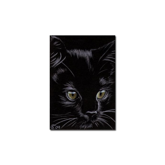 Black CAT 156 kitten Halloween chat noir drawing painting Sandrine Curtiss Art