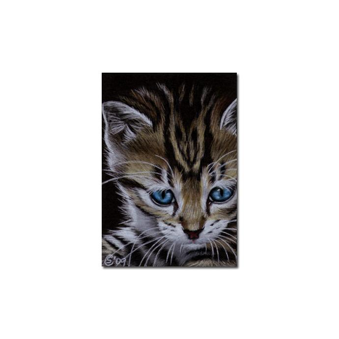 Tabby 56 CAT grey ginger orange tiger kitty kitten drawing painting Sandrine