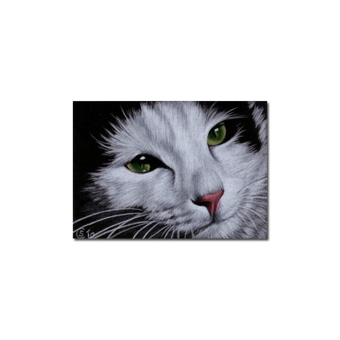 TUXEDO Holly 38 CAT kitten Black Halloween drawing painting Sandrine Curtiss Art