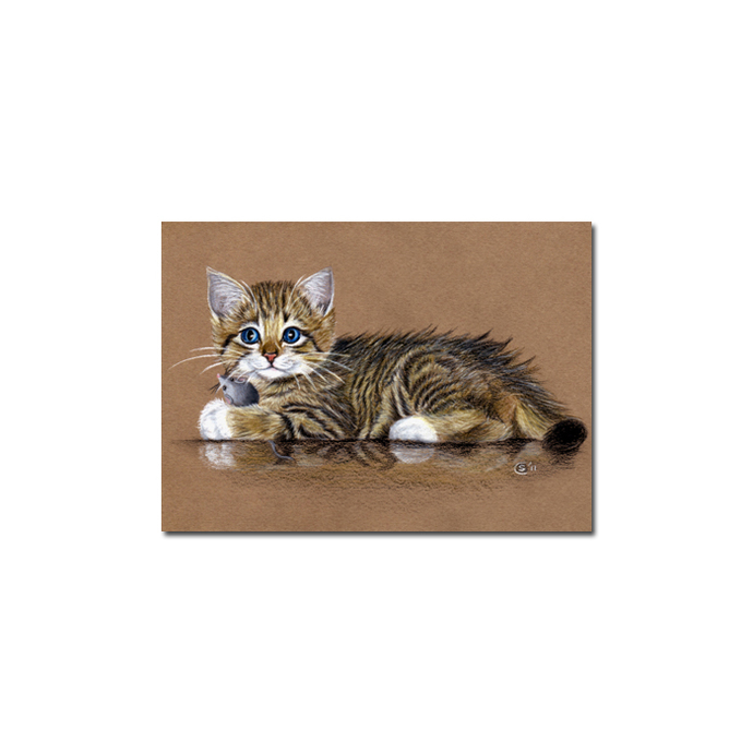 Tabby 90 CAT grey tiger kitty kitten drawing painting Sandrine Curtiss Art