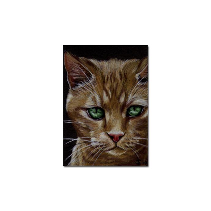 TABBY 79 CAT orange ginger kitten Sandrine Curtiss Art Limited Edition PRINT
