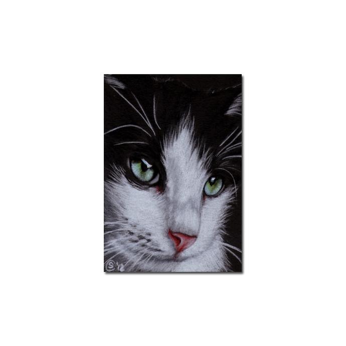 TUXEDO 20 CAT kitten Black Halloween drawing painting Sandrine Curtiss Art