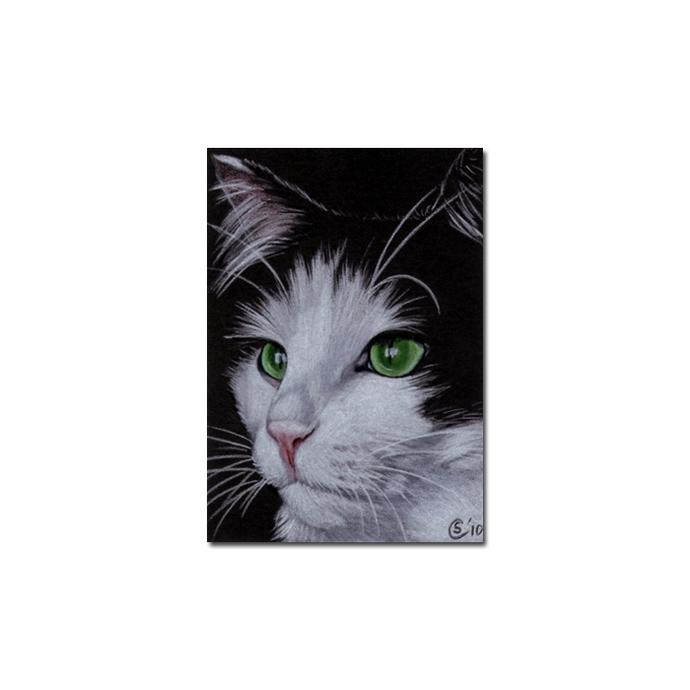 TUXEDO Holly 28 CAT kitten Black Halloween drawing painting Sandrine Curtiss Art