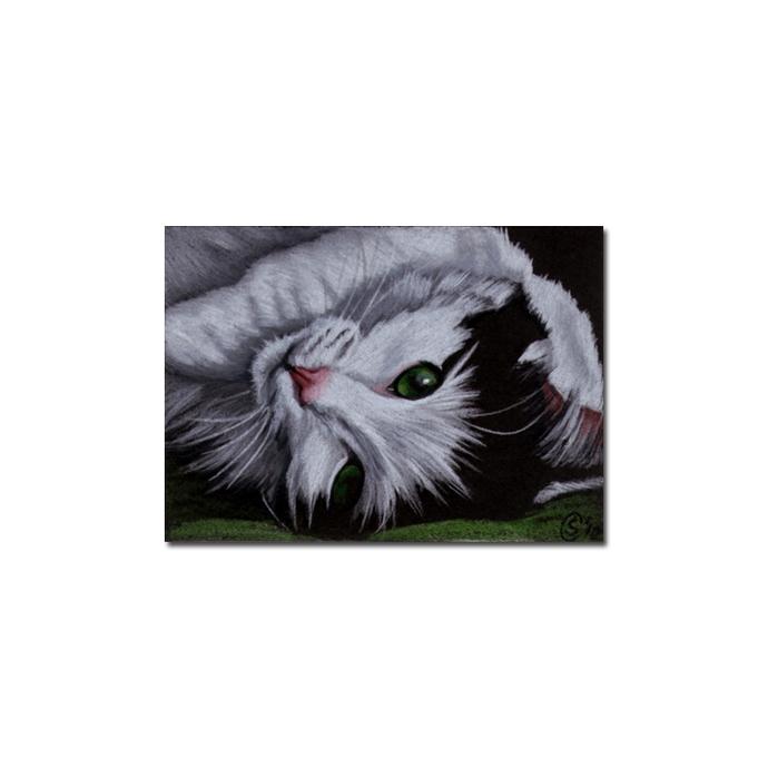 TUXEDO Holly 29 CAT kitten Black Halloween drawing painting Sandrine Curtiss Art