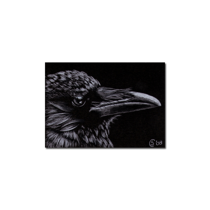 RAVEN 53 crow black bird Halloween colored pencil drawing painting Sandrine