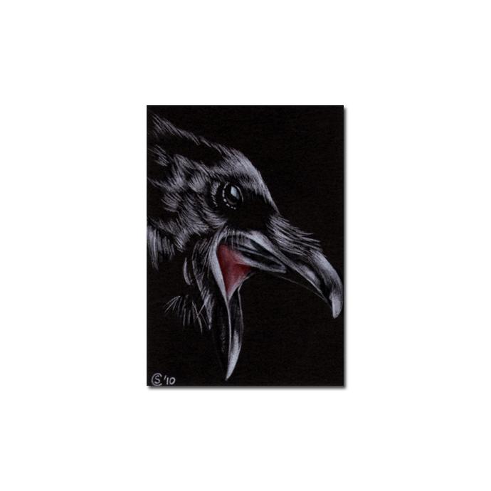 RAVEN 141 crow black bird Halloween colored pencil drawing painting Sandrine