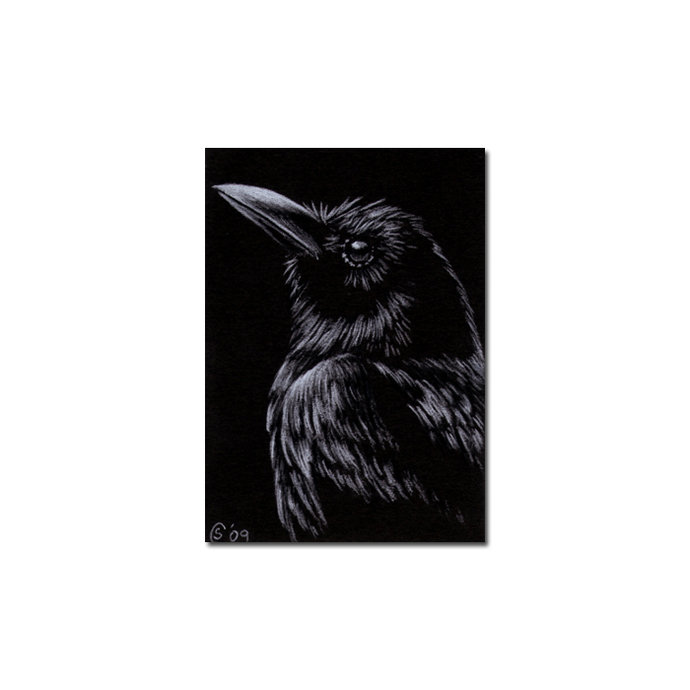 RAVEN 90 crow black bird Halloween colored pencil drawing painting Sandrine