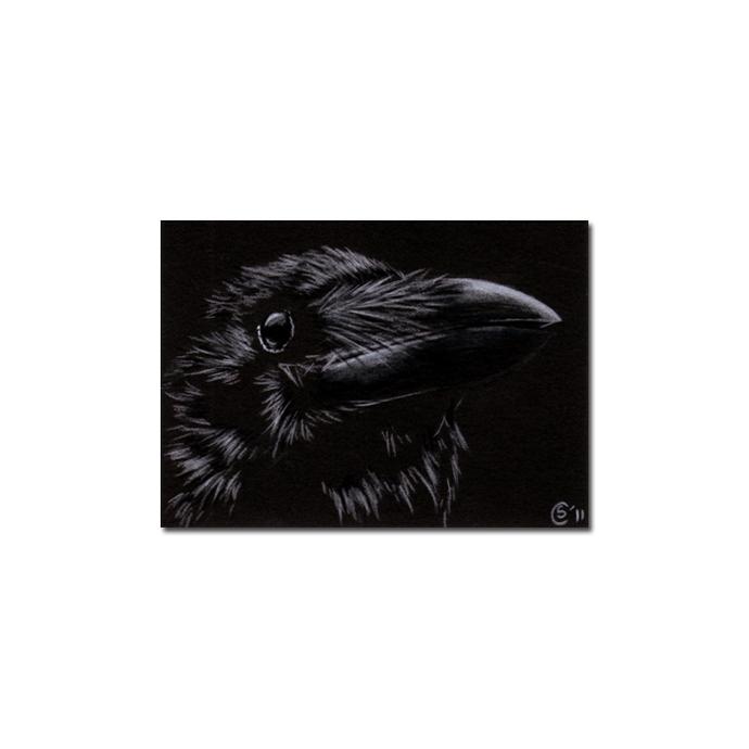 RAVEN 163 crow black bird Halloween colored pencil drawing painting Sandrine