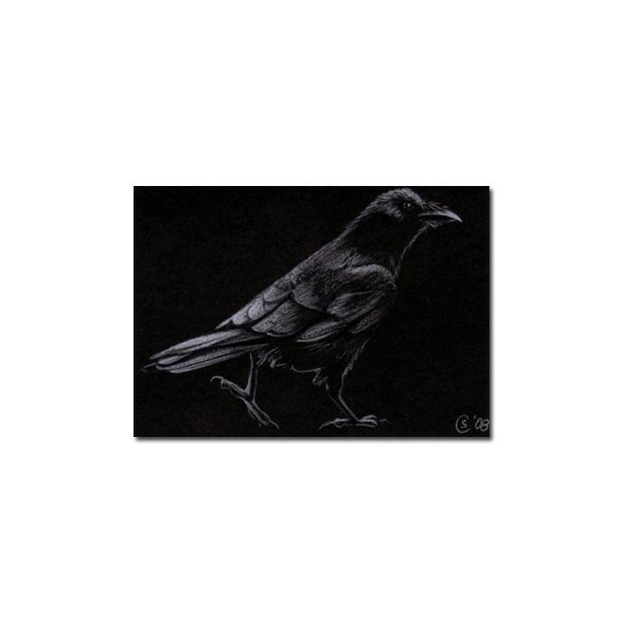 RAVEN 57 crow black bird Halloween colored pencil drawing painting Sandrine