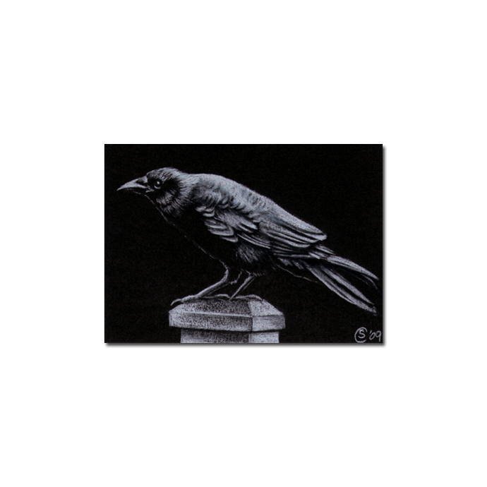 RAVEN 69 crow black bird Halloween colored pencil drawing painting Sandrine