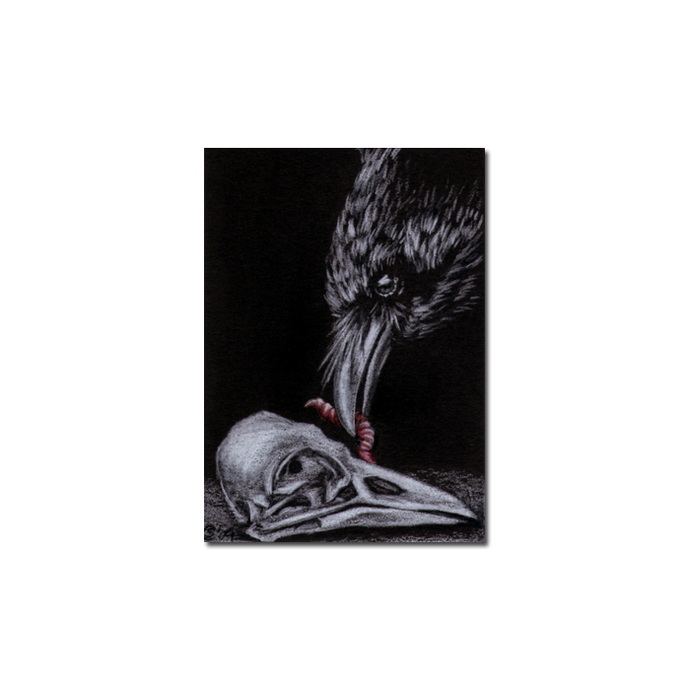RAVEN 99 crow black bird skull worm Halloween colored pencil drawing painting