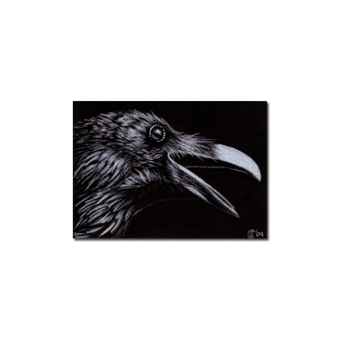 RAVEN 82 crow black bird Halloween colored pencil drawing painting Sandrine