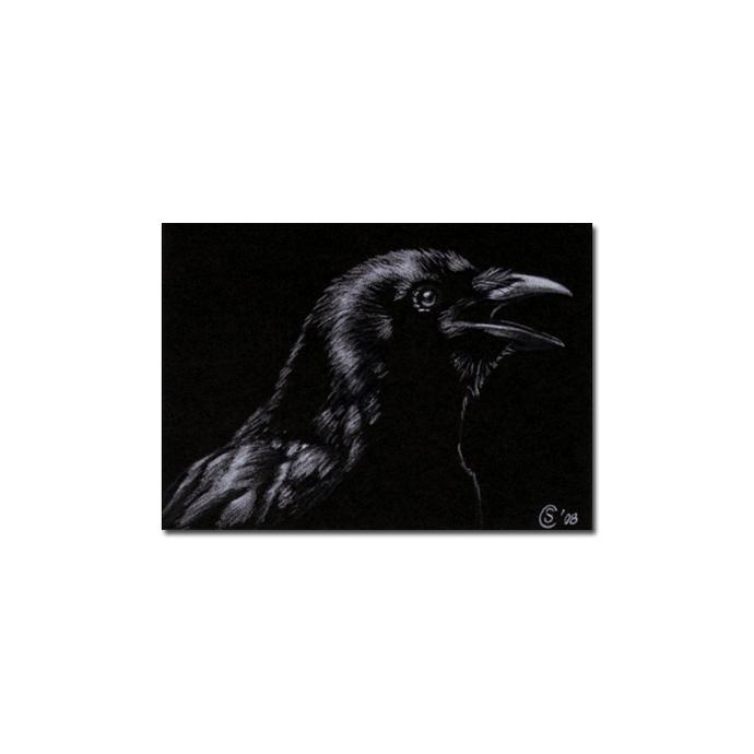 RAVEN 60 crow black bird Halloween colored pencil drawing painting Sandrine