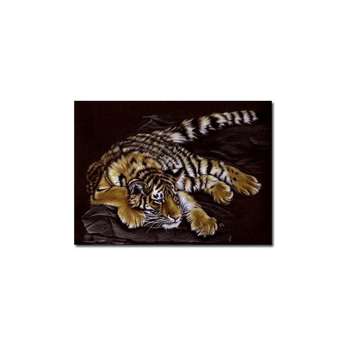 TIGER 39 portrait big cat feline pencil painting Sandrine Curtiss Art Limited